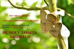 heart-1506259_960_720